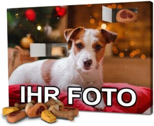 Foto-Adventskalender für Hunde mit eigenem Bild
