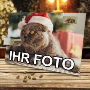 Foto-Adventskalender für Katzen mit eigenem Motiv k2 e1613777760662