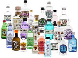 Gin Adventskalender 2020