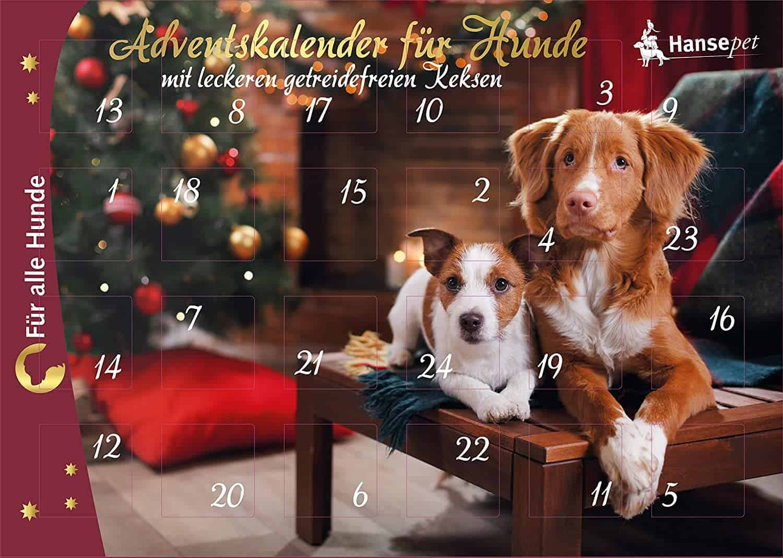 nanook Hansepet Adventskalender für Hunde
